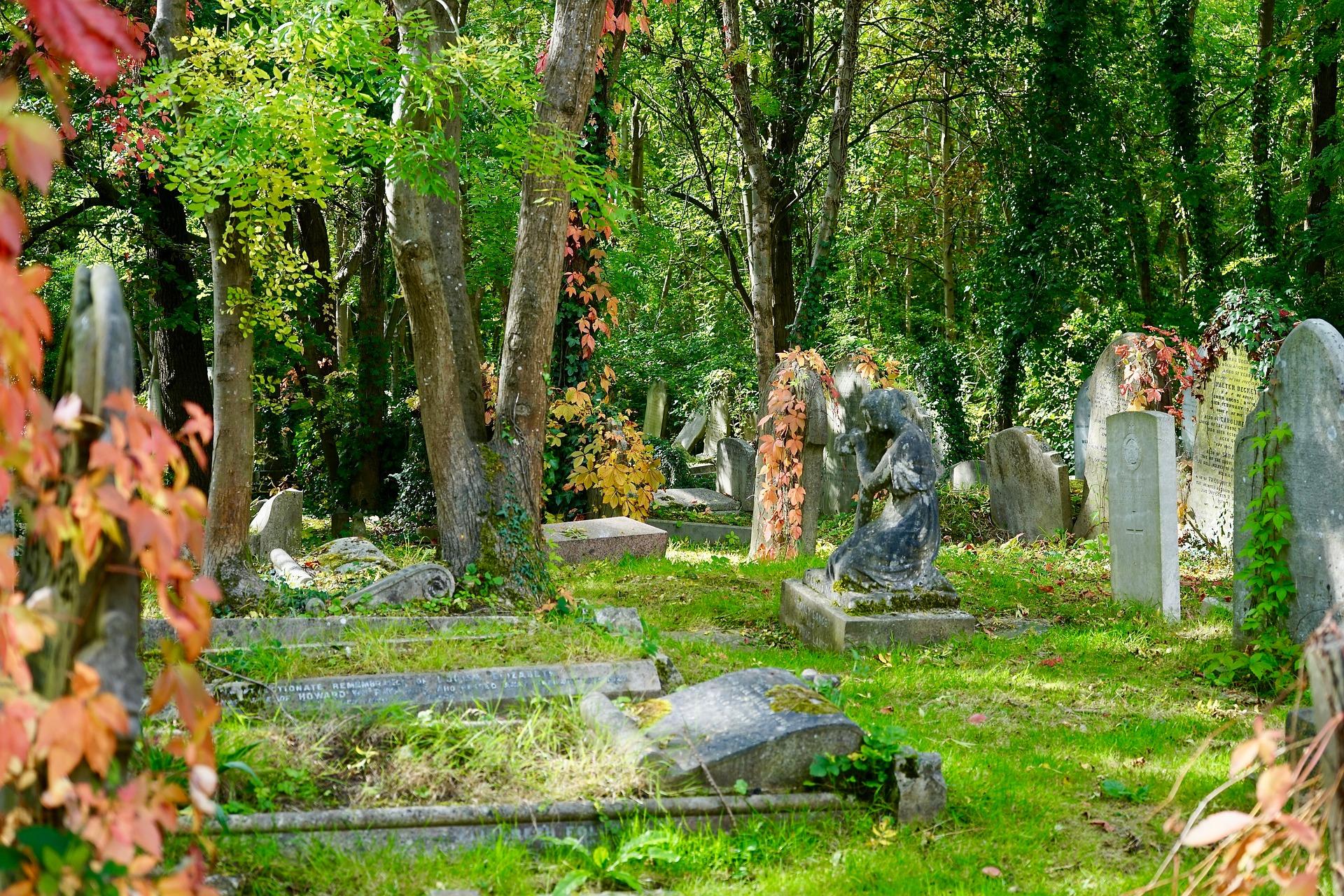 cmentarz za granicą